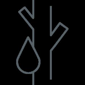 Icon Fachbereich Angiologie