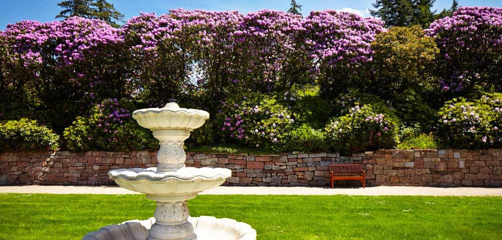 Parkanlage der Max Grundig Klinik mit Brunnen, Rasen und blühenden Büschen