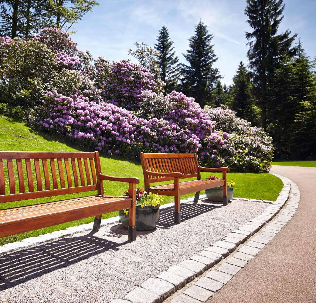 Parkanlage der Max Grundig Klinik mit Weg, Bänken und blühenden Büschen