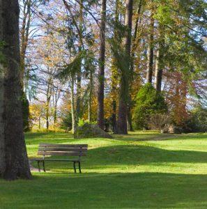 Parkanlage der Max Grundig Klinik mit Wiese, Bäumen und Bank